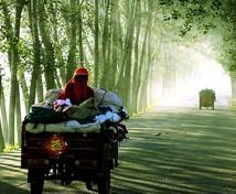 农民的中国梦